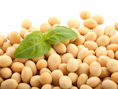 バストアップ効果あり?大豆食品